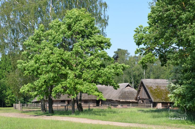 Lietuvas tautas muzejs Rumsiskes - 10
