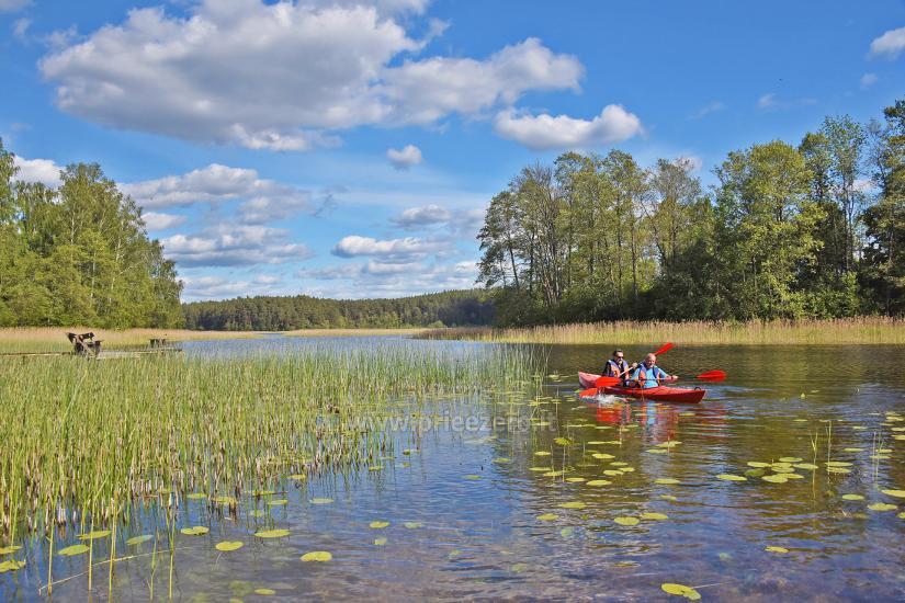 Kayak īre sētā pie ezera Gaidelių sodyba - 6