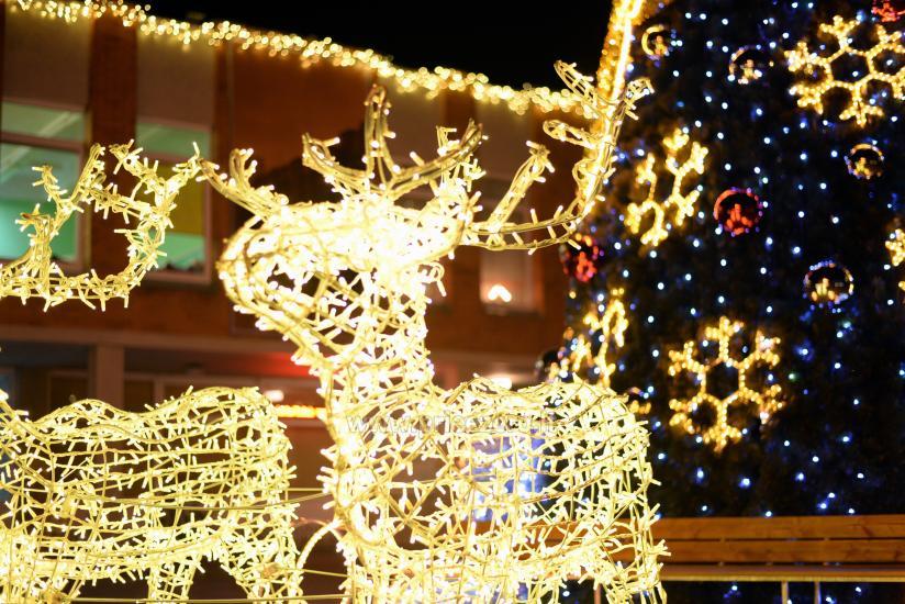 Ziemassvētku eglīte atvēršana Trakai - 7