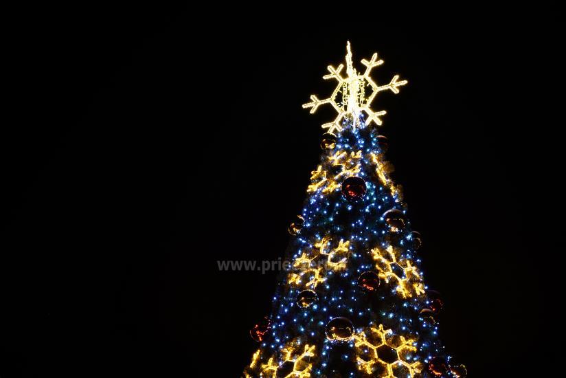Ziemassvētku eglīte atvēršana Trakai - 10
