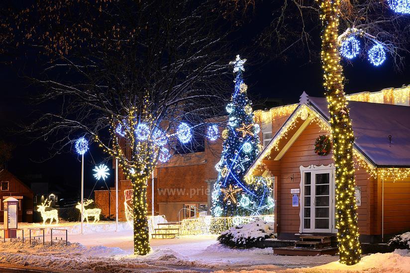 Ziemassvētku eglīte atvēršana Trakai - 6