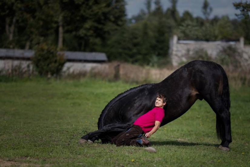 Zirgu izjādes, zirgu apmācība - 6