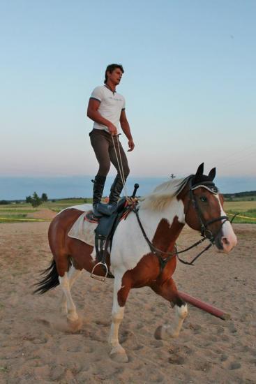 Zirgu izjādes, zirgu apmācība - 12