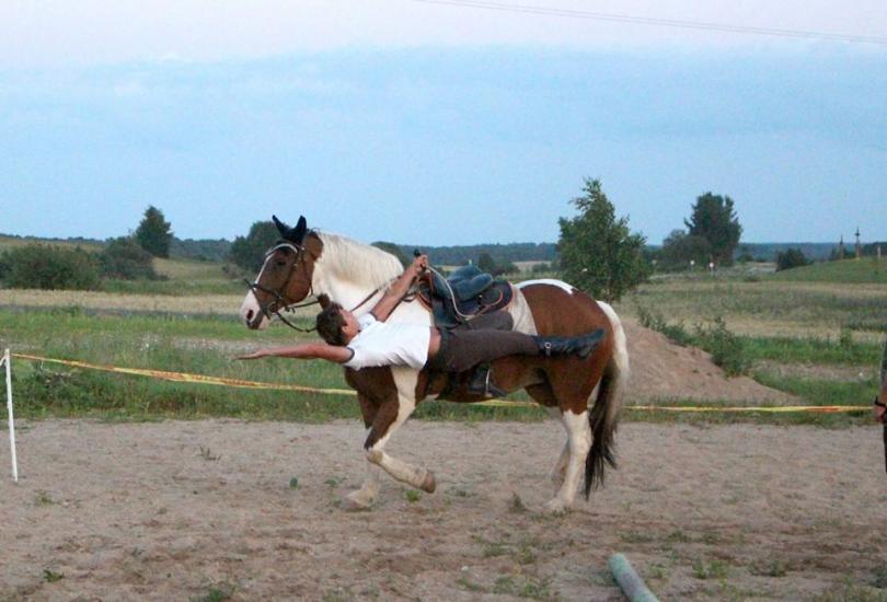 Zirgu izjādes, zirgu apmācība - 15