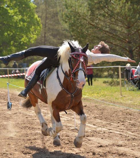 Zirgu izjādes, zirgu apmācība - 18
