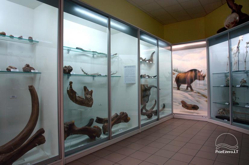 Kauņas zooloģijas muzejs - 5
