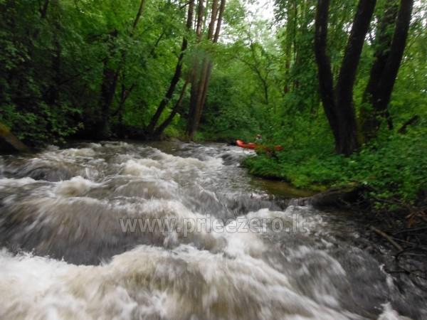 Smailītes īre Kaišiadorys rajonā pie upes Strėva - 10