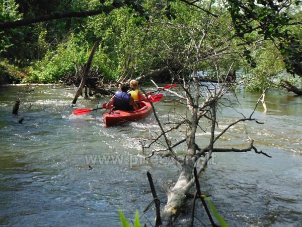 Smailītes īre Kaišiadorys rajonā pie upes Strėva - 3