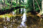 Atpūtas pie ezera Zeimenis Lietuvā - 37