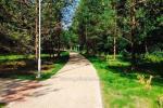 Atpūtas pie ezera Zeimenis Lietuvā - 36