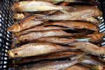 Kūpinātas zivis - 8