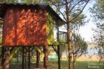 Potītes - divvietīga māja kokos - 4