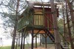 Potītes - divvietīga māja kokos - 9