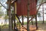 Potītes - divvietīga māja kokos - 10