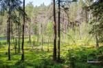 Pastaigas ekskursijas Labanoras reģionālajā parkā Lietuvā - 7