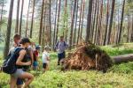 Pastaigas ekskursijas Labanoras reģionālajā parkā Lietuvā - 4