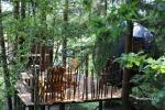 Telts kokā - 1